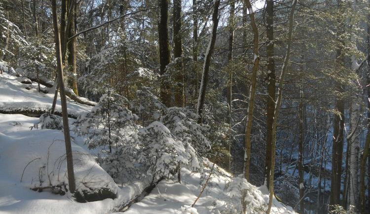 Leichte Winterwanderung im Hausruckviertel