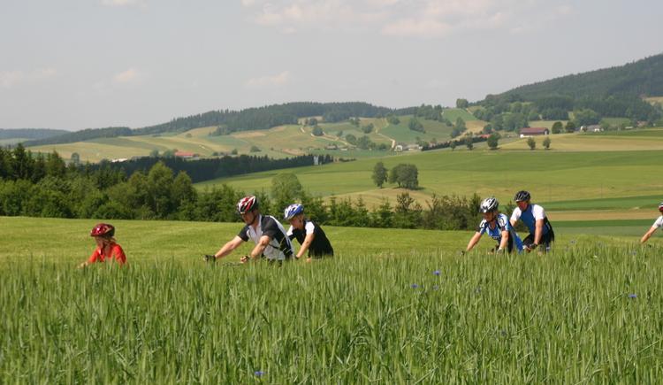 Radeln in Grünbach (© MV Kernland)