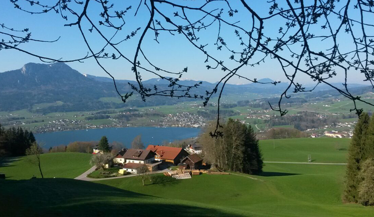 view on the Gesundheitshof, surrounded from meadows, in the background the lake and the mountains