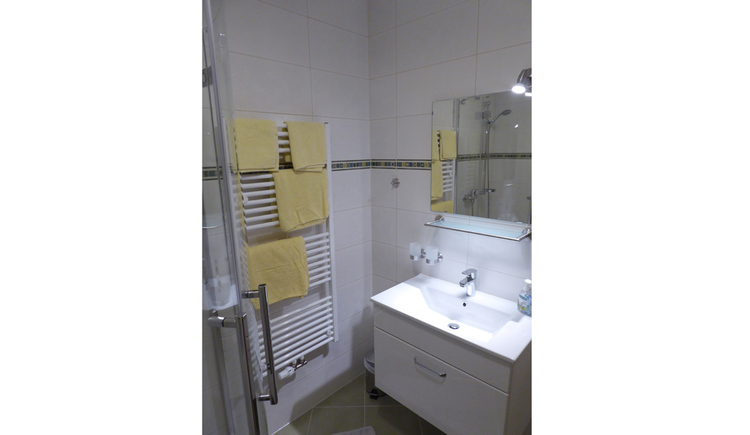 bathroom with right the bassin with mirror, on the left the toweldryer and the shower