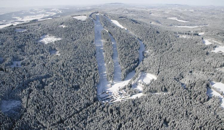 winter-sternstein
