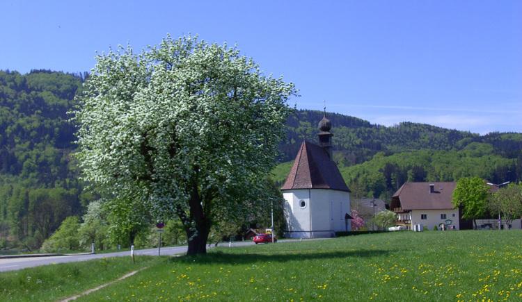 Filialkirche Buchberg 1 (© Ferienregion Attersee-Salzkammergut)