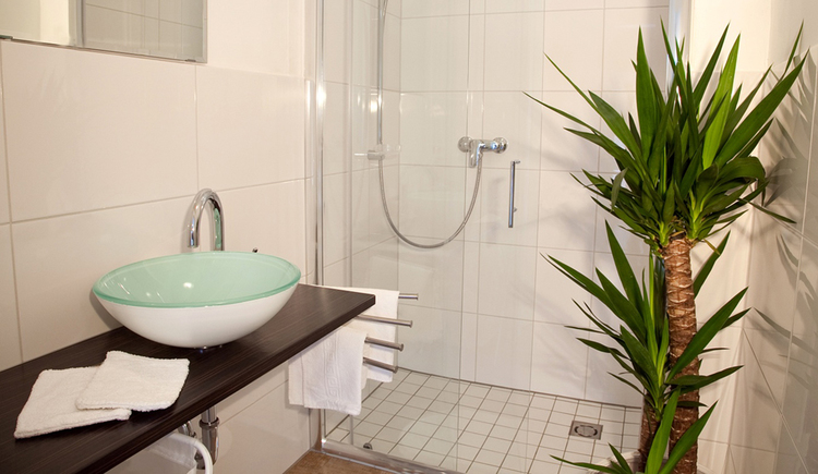 bathroom with a palm, sink, shower in the background