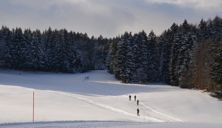 Wintersport in Natternbach