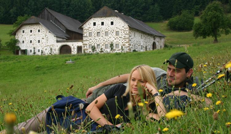 Oberösterreich, Mühlviertel, Urlaub, Ausflug, Mühlviertler Kernland, Freistadt, Natur, Wandern, Radfahren
