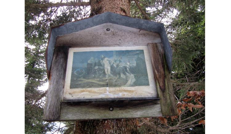 Blick auf ein Bild an einem Baumstamm