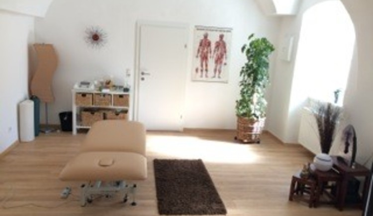Here you will see the light surgery with bed, potted plant, side table and carpet.