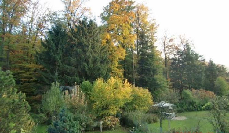 Garten im Herbst (© anni)
