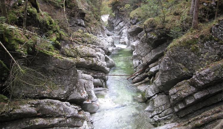 Rettenbachwildnis (© Tourismusverband Bad Ischl)