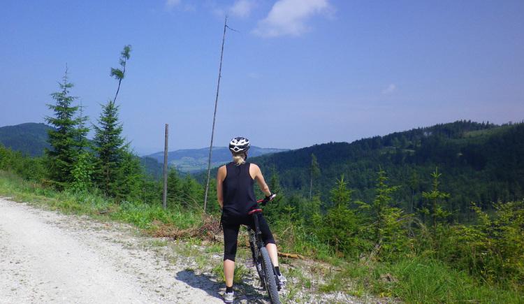 Mountainbiketrecke Krahberg Susi (© Susanna Kiebler)