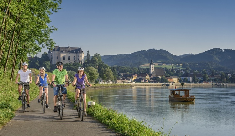 Donauradweg bei Grein. (© WGD Donau Oberösterreich Tourismus GmbH-Hochhauser)