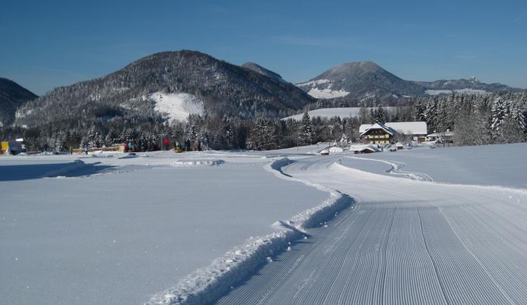 Winterwanderweg Dorf mit Zwischenstopp beim Snowtubing (© Tourismusverband Faistenau)