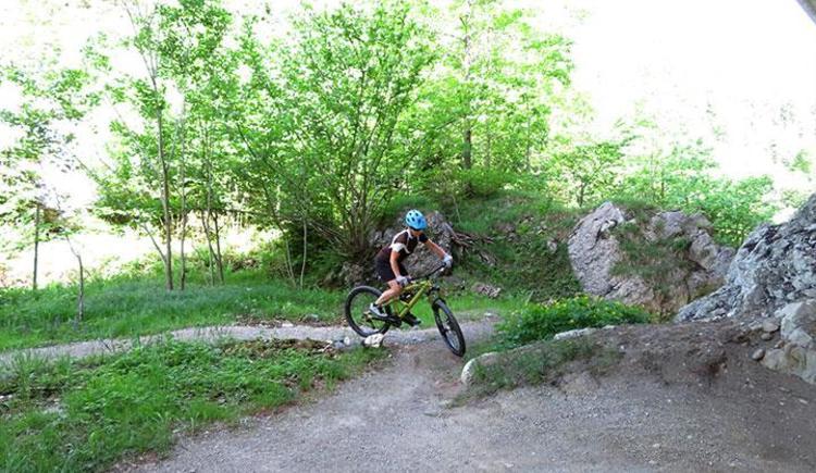 Mountainbike Fahrtechnik & Tourenguiding (© pyhrnPriel-mountainbike e.U.)