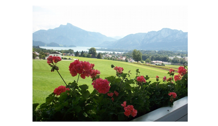 View from the balcony with flowers to the meadow, behind houses, lake and the mountains in the background