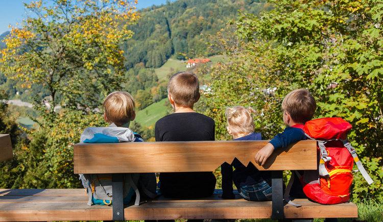Gemütlicher Rastplatz mit toller Aussicht (© Melanie Eichenauer/TV Nationalpark Region Ennstal)