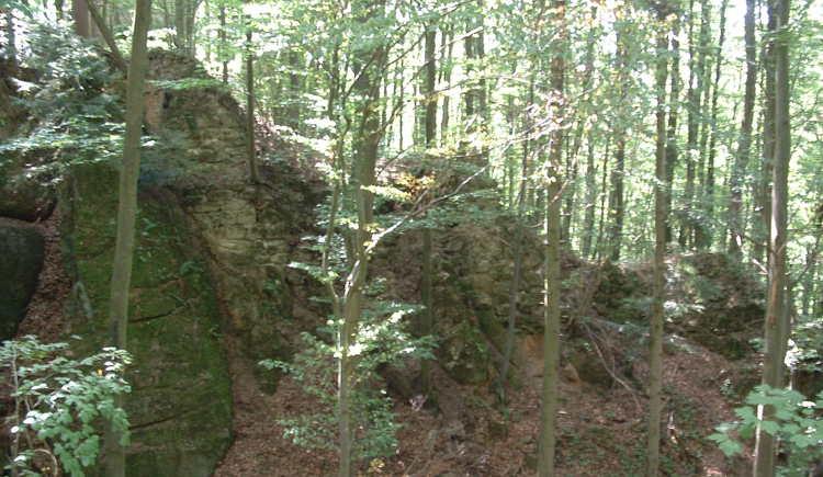 Restmauer Ruine Saxenegg