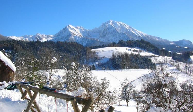 Gasthof-Pension Moosgierler Winterpanorama (© Moosgierler)