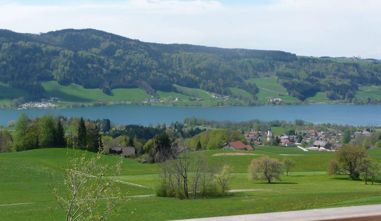 view on the Irsee and meadows. (© Familienferienhof Stabauer)