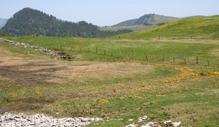 Ausblick zum Windkogel (© WTG)