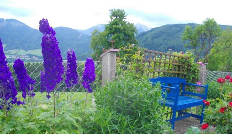 Gemütliche Bank inmitten der Blumen (© Ferienwohnung Burgi)