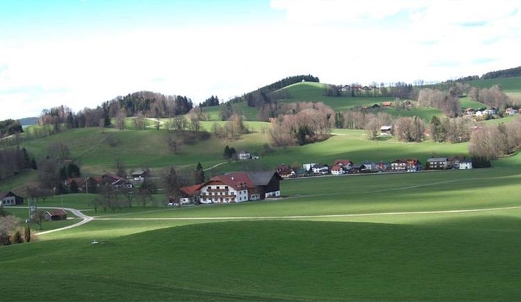 Blick auf den Bauernhof Schwaighofer, umgeben von Wiesen