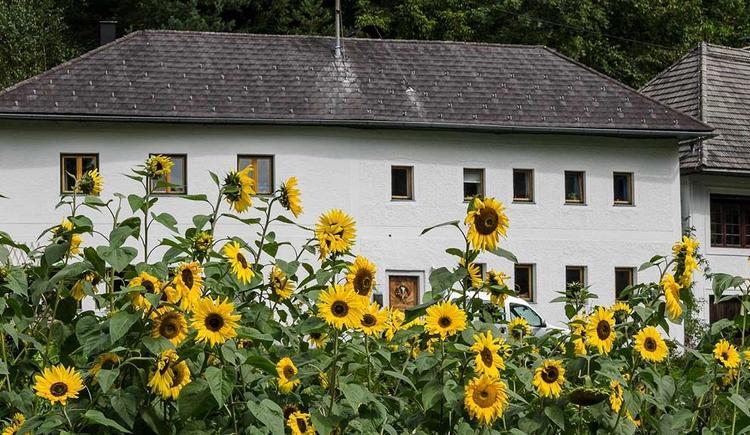 Ausbildungszentrum Wilde Rose (© Wilde Rose)