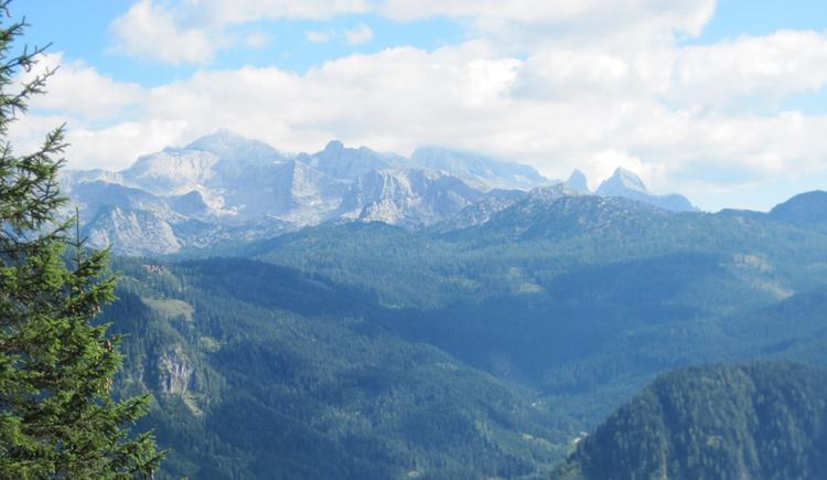 Enjoy the beautiful view to the Dachstein. (© Gisbert Rabeder)