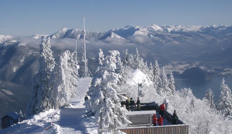 Ausblick vom Zwölferhorn (© WTG)