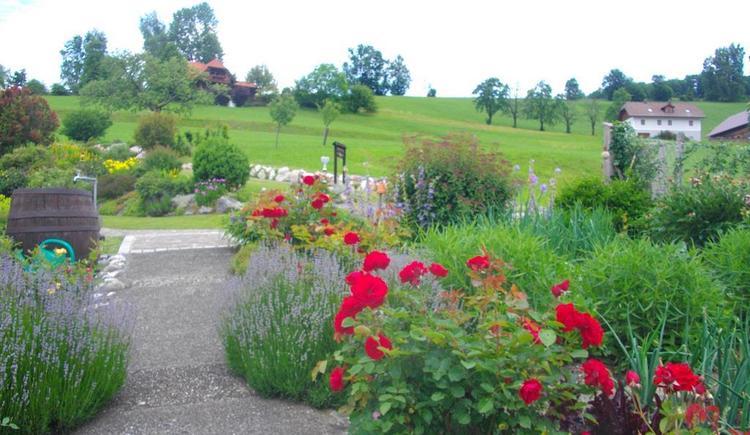 Von Gemüse-Blumengarten auf Steingarten (© Ferienwohnung Burgi)