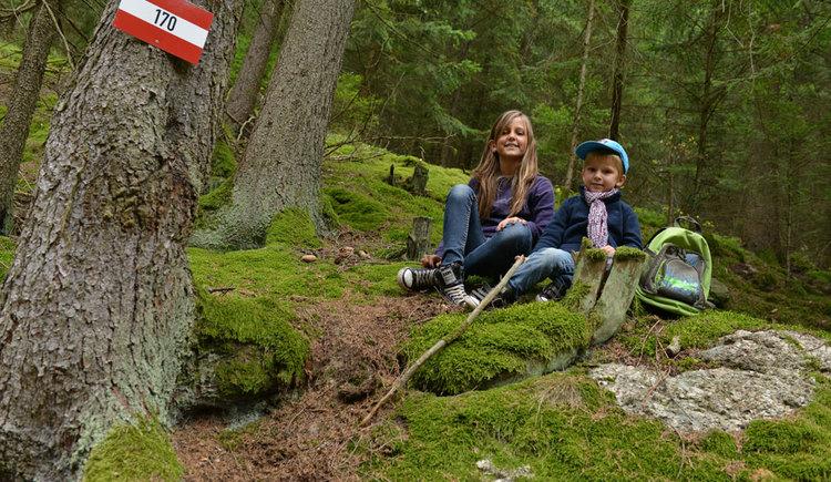 Mühlviertler Wald - riesiger Spielplatz für die Kleinen (© OÖ Tourismus/Röbl)