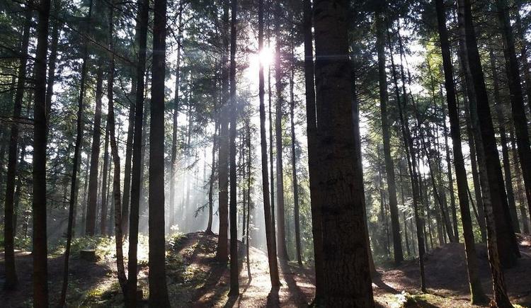 Meditieren (© www.pixabay.com)