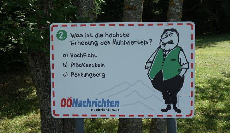 #2 (© Johann Mülleder)