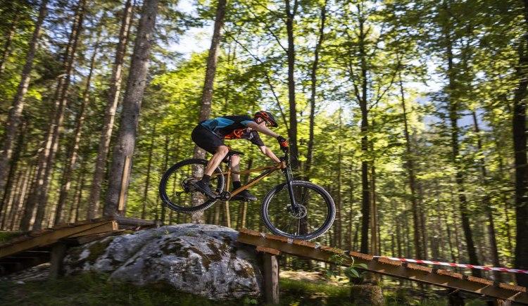 Mit KTM Bikes ist man auch in der Bike Arena Obertraun bestens für technische Abschnitte gerüstet. (© KTM Fahrrad)