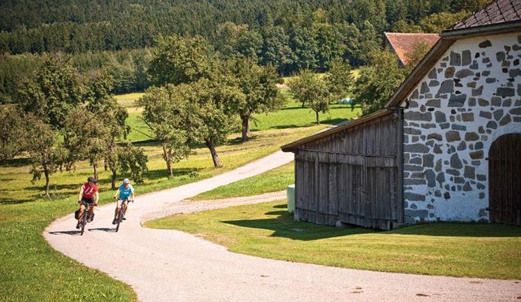 Radfahren in der Region (© OÖ Tourismus/Erber)