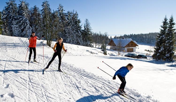 Familienlanglauf im Böhmerwald (© Weissenbrunner)