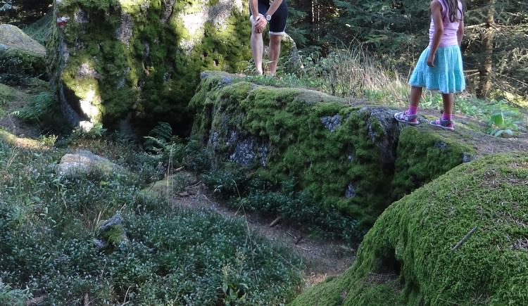 Am Weg zur Bergsteinmauer (© Sandra Lasinger)