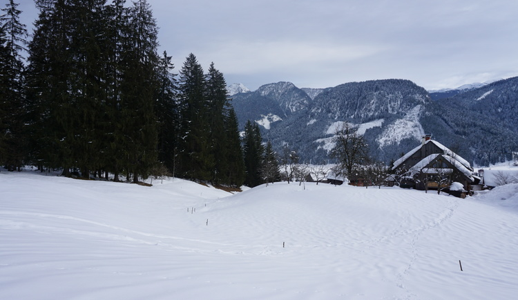 The view over the valley of Gosau is beautiful.