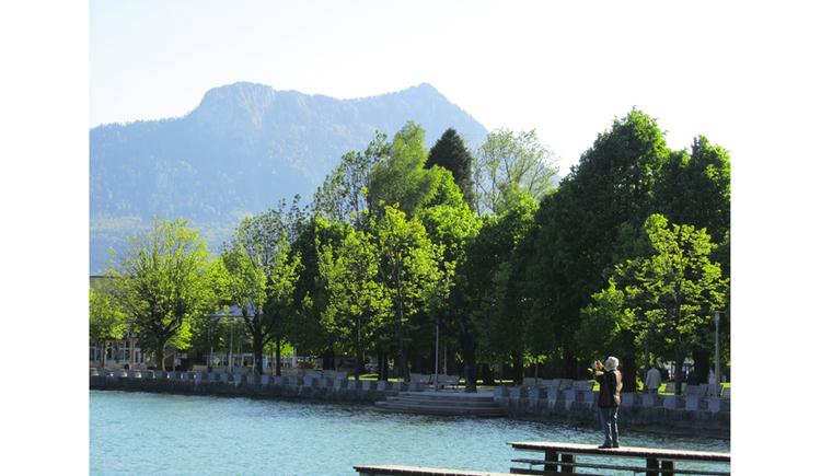 Blick von der Seepromenade auf den See, seitlich Bäume, im Hintergrund Berge