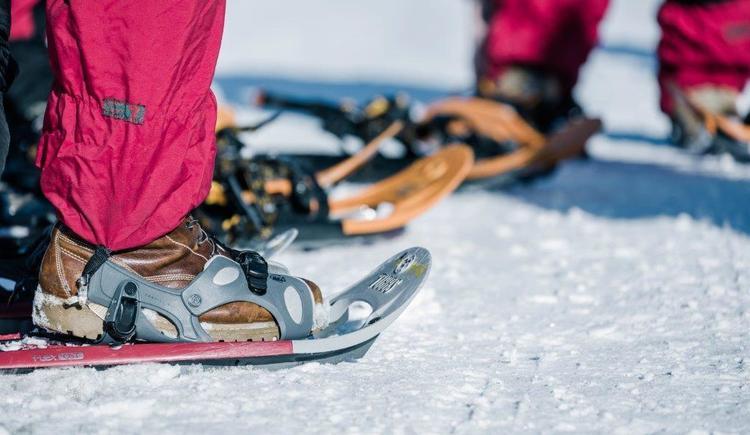 Schneeschuhwandern (52)