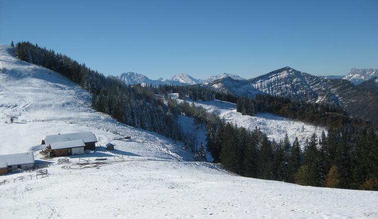 Ausblick zur Loibersbacher Höhe (© Tourismusverband Faistenau)
