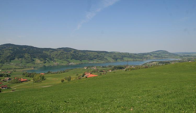 Ein Panoramablick über grüne Wiesen und einzelne Gehöfte auf den Irrsee. Im Hintergrund der Kolomansberg und der Irrsberg.
