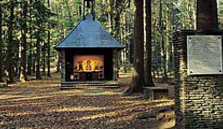 Engelhartszell, Umgebung, Natur, Wandern, Wald, Wiesen