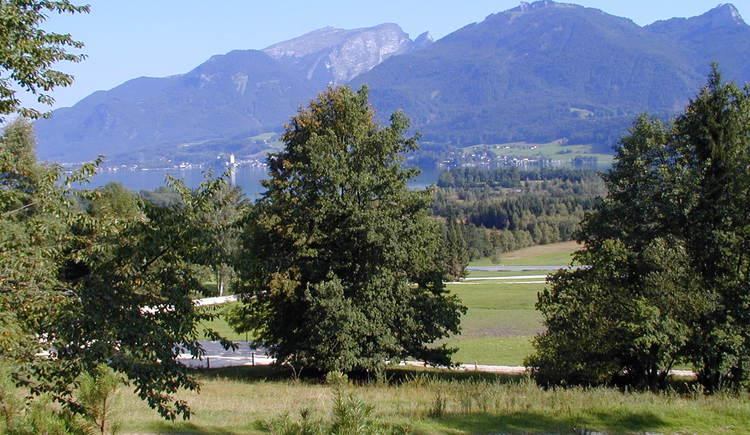 mit Ausblick zum Wolfgangsee