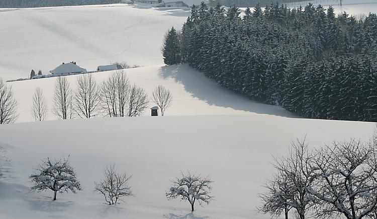 Winterlandschaft in der Umgebung Lichtenau (© Schwarzmann)