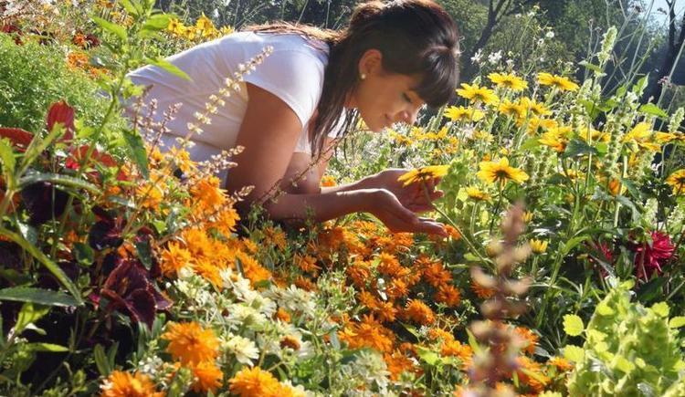 Botanica-Park_Blütenpracht