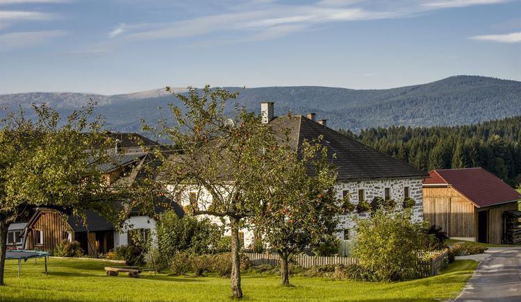Bauernhof mit Blick auf den Böhmerwald