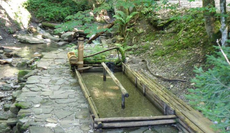 Kneippbecken