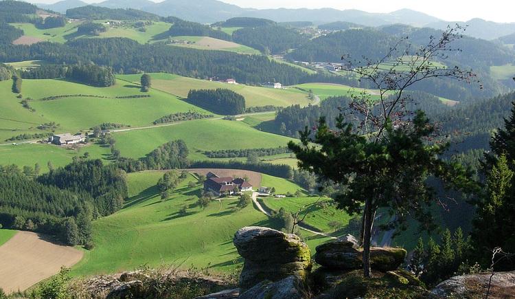 Sicht vom Wolfsberg Richtung Königswiesen (© Mühlviertler Alm)