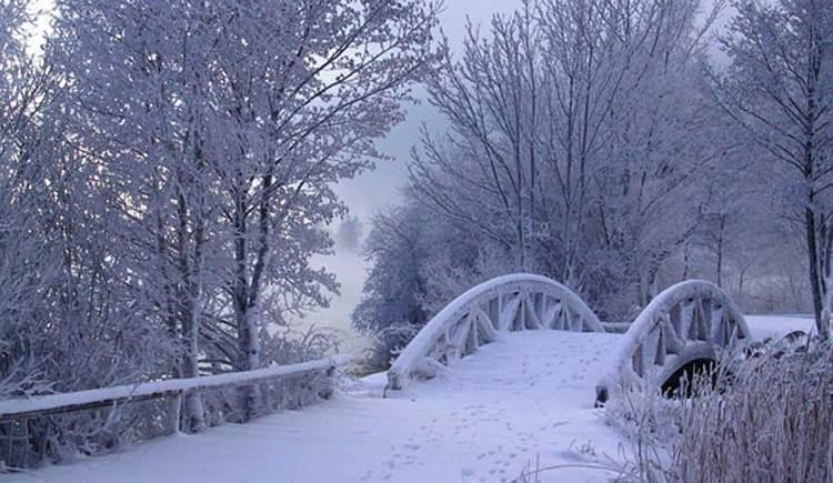 Winterlandschaft mit verschneiter Brücke, zwischen den Bäumen kann man den See erkennen. (© ww.mondsee.at)