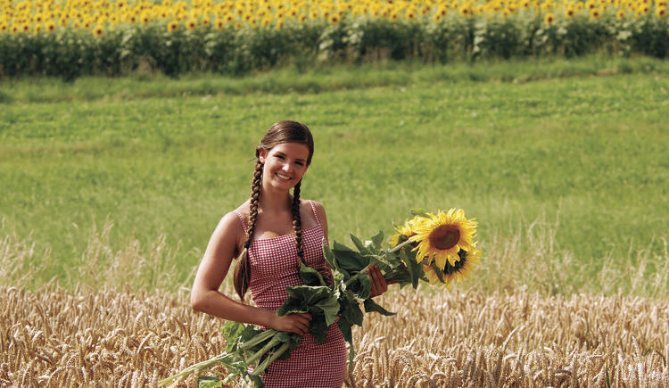 Innvierltel Tourismus/Treubach/Sonnenblume